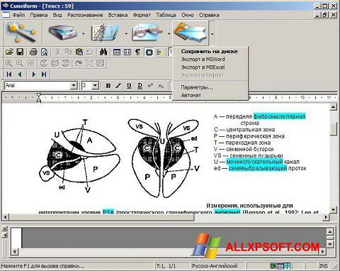 Ekran görüntüsü CuneiForm Windows XP