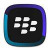 BlackBerry Link Windows XP