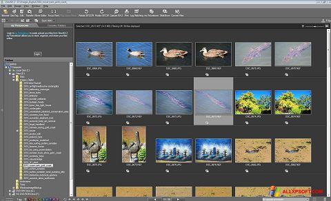 Ekran görüntüsü ViewNX Windows XP