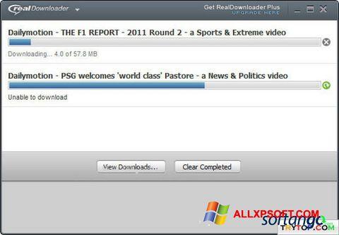 Ekran görüntüsü RealDownloader Windows XP