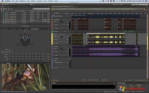 Ekran görüntüsü Adobe Audition Windows XP