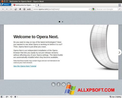 Ekran görüntüsü Opera Developer Windows XP